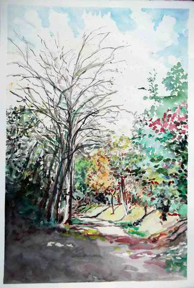 image de paysage à l'aquarelle